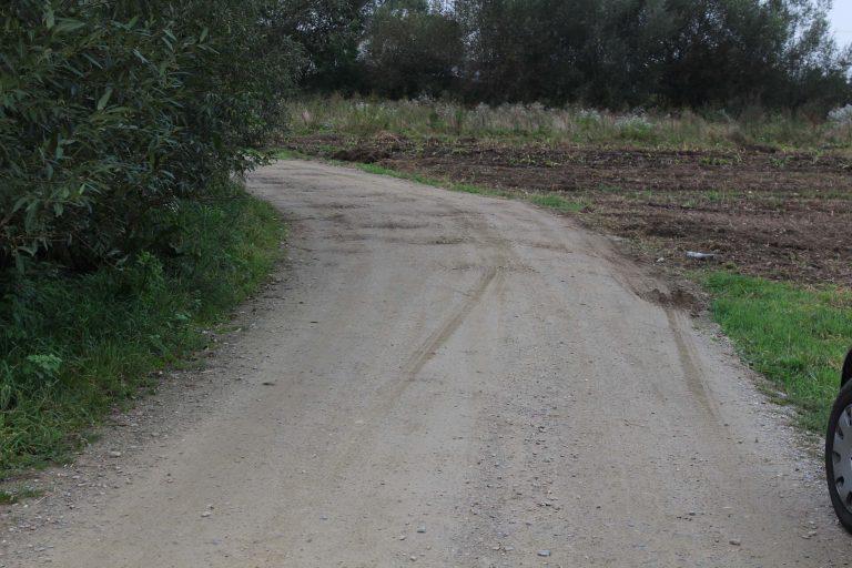 1 milion de euro pentru drumurile agricole din Braniştea